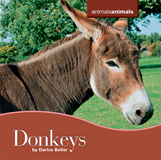waptrick.com Donkeys From Animals Animals