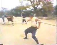 waptrick.com Shaolin Super Humans