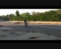 waptrick.one Video Gag Funny Drole Rire Humour