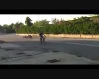 waptrick.com Video Gag Funny Drole Rire Humour