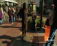 waptrick.one San Francisco City Guide
