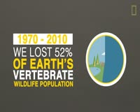 waptrick.one TIL - We Have Lost 50 of Wildlife Since 1970