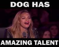 waptrick.com This dog has amazing talent - must watch