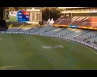 waptrick.one ASSIST CATCHES - TOP 10 Impossible Assists Catches on Boundary Line