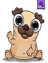 Pug My Virtual Pet Dog