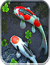 waptrick.one Water Garden Live Wallpaper