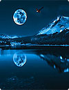 waptrick.one Blue Moon Live Wallpaper HD