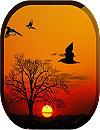 waptrick.one Sunset Live Wallpaper