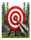 Target Archery Games