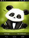 waptrick.one Panda Bobble Head