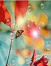 waptrick.one Galaxy S4 Red Leaf