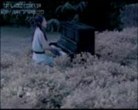 Mei You Ren Bi Wo Gen Ai Ni Video Clip