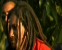 Bob Marley Video Clip
