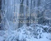 My December Only Lyrics Video Clip