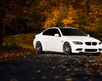 BMW M3 Road Autumn