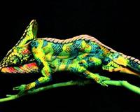 Fine Art Bodypainting By Johannes Stotter