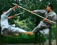 Amazing Chinese Martial Arts