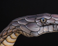 Hand Snake With Body Painting