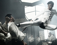 Donnie Yen In Air