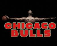 Micheal Jordan And Chicago Bulls