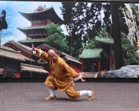 Shaolin Yi Jin Jing