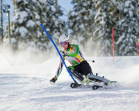 Skiing The Winter Sports