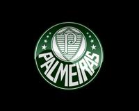 Palmeiras 01