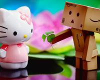 Box Boy Loves Kitty