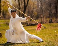 Kung Fu Master Exercise