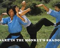 Snake I The Monkey's Shadow