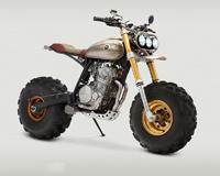 Moto BW650