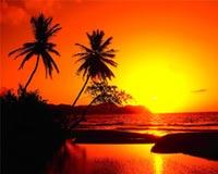 sundown 49