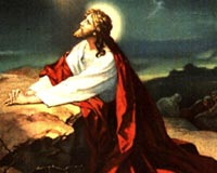 Jezus Krzyża 14