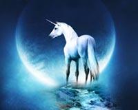 Fantasy Horse