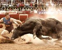 Luftimi Bull