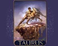 Taurus Cover