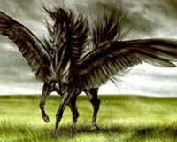 Winged Black Horse