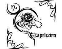 Capricorn 17
