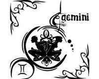 Gemini 14