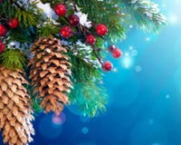 Viti i ri Pema e Krishtlindjeve