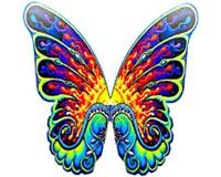 butterfly wing 1