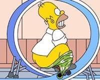 Homer 01