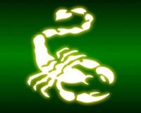 scorpion 03