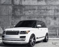 Rover Ranged White