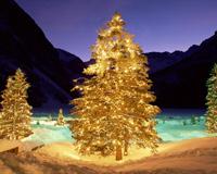Merry Christmas Happy New Year 05