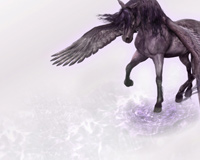 The Horse Wings Pegasus