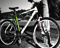 Bisiklet Ahşap