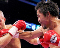 Manny Pacquiao Knockout