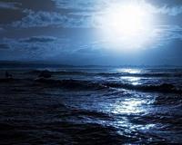 Moonlight Seascapes